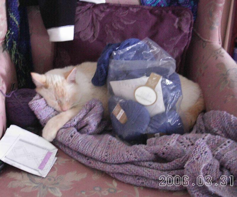 Gabriel nesting in yarn