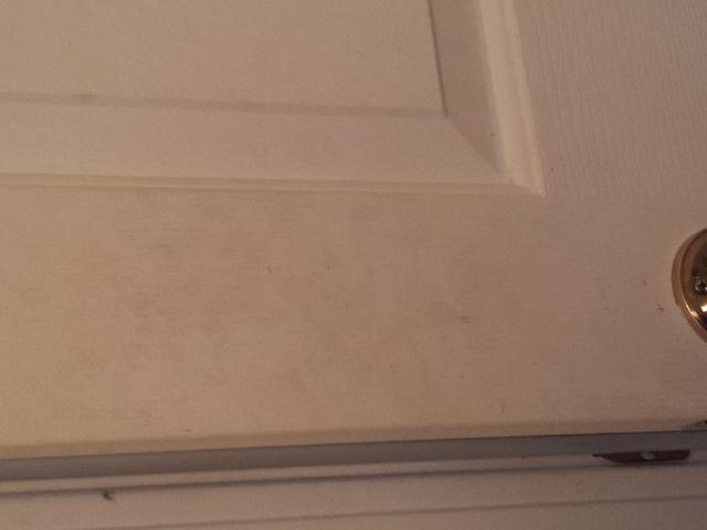 Bathroom door 3-17-2013 12-32-31 PM