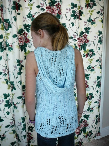 Tilting Ladders Sleeveless Hoodie -- Accomplished