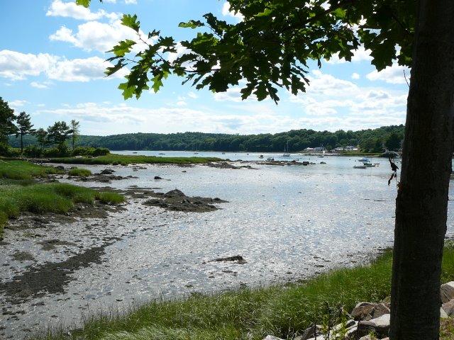 Damarascotta_river_low_tide