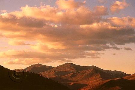 California_white_mountains