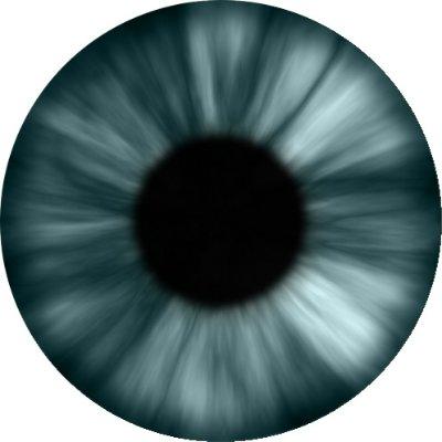 Eye_grayish