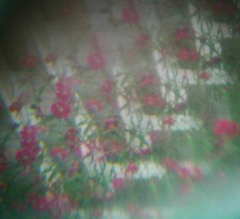 Kaleidoscopic_image