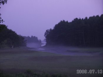 Misty_evening_in_maine