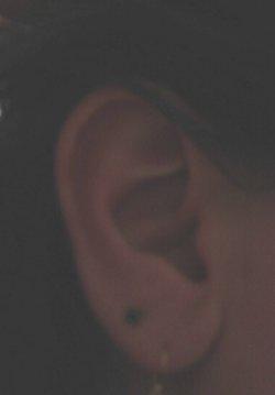 My_ear_2a1_1