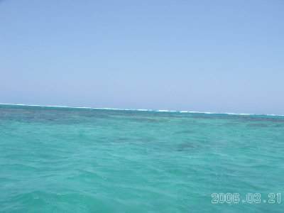 Reef2_1