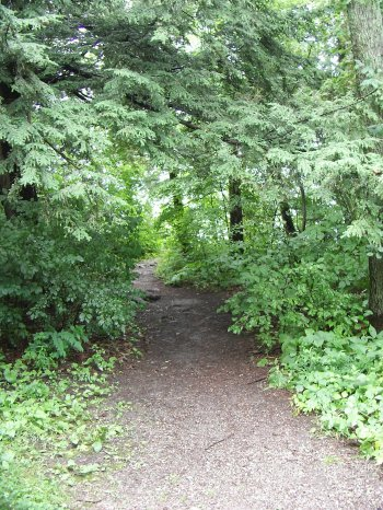 Vemont_path