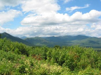 White_mountains