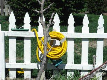 Yellow_hose